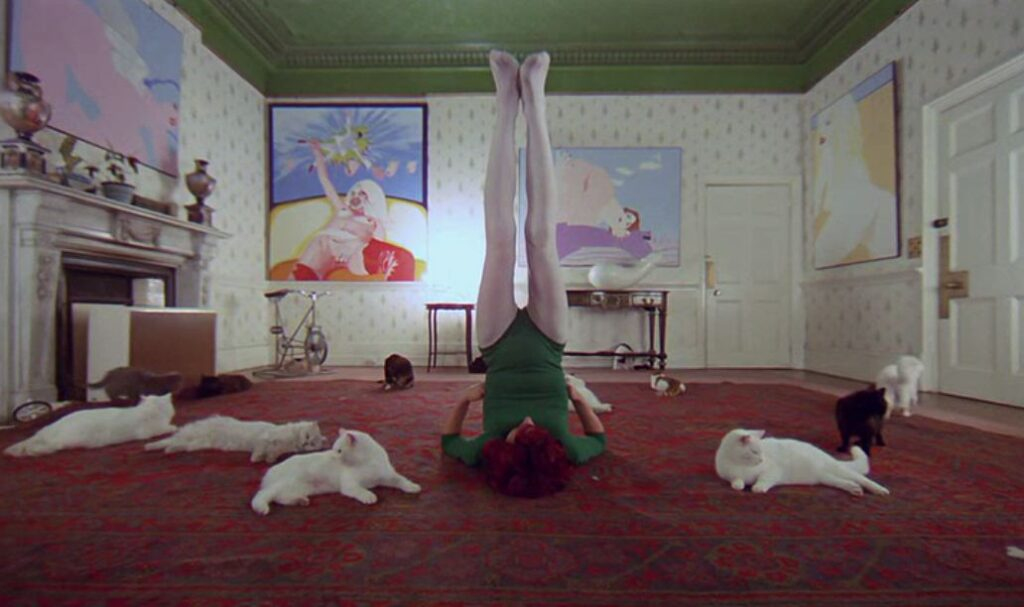 Cat Lady's house in A Clockwork Orange